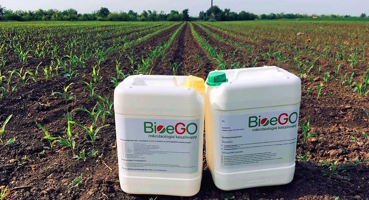 Hogyan hat a Bioego (1)